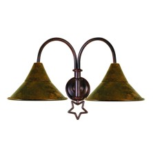 Star-shaped Wall Light Fixture large tulip