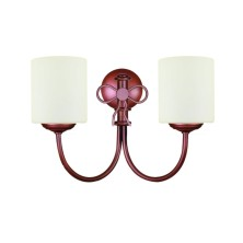 Decorative Wall Light Fixture tulip opal